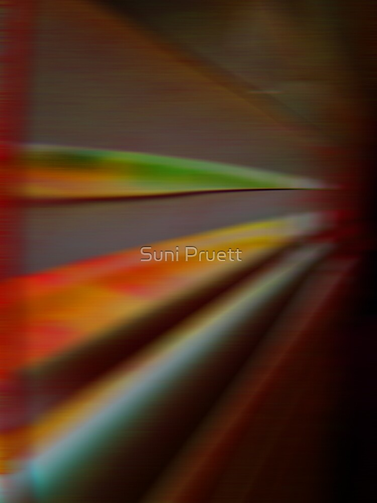 Untitled by Suni Pruett