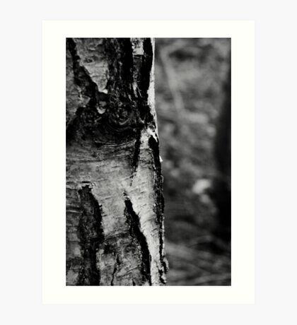 Bark II Art Print