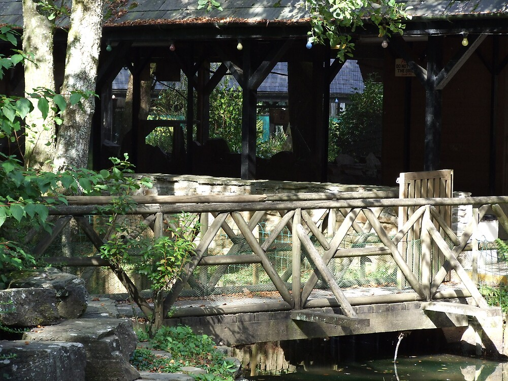 wooden bridge by matjenkins