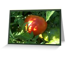 Tomato Devine Greeting Card
