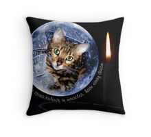Zen in a Snow Globe Throw Pillow
