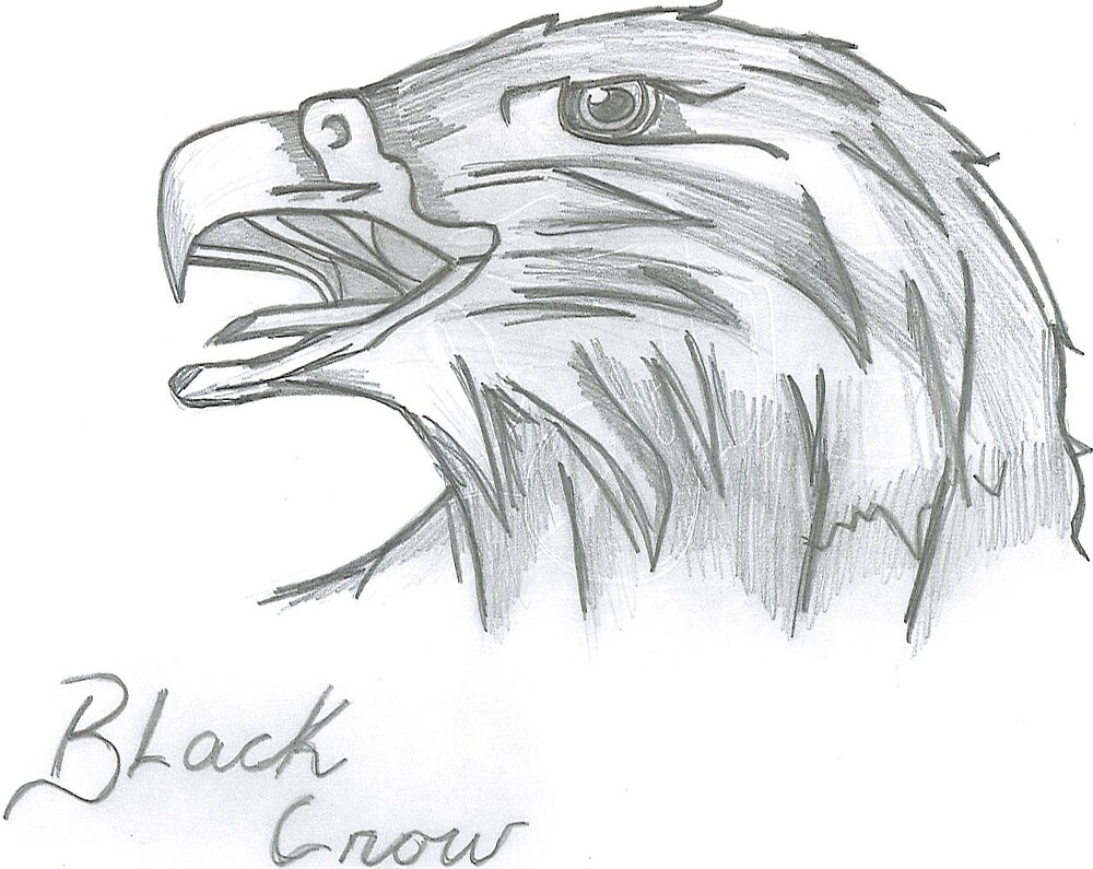 Black Crow by deron11
