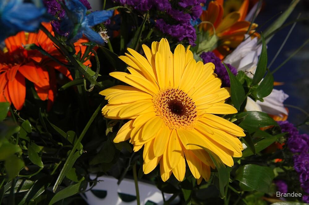 Yellow flower by Brandee