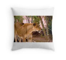 Lioness (Panthera leo) Throw Pillow