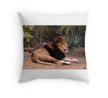 Male Lion (Panthera leo) Throw Pillow