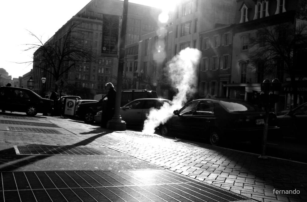 Steam by fernando