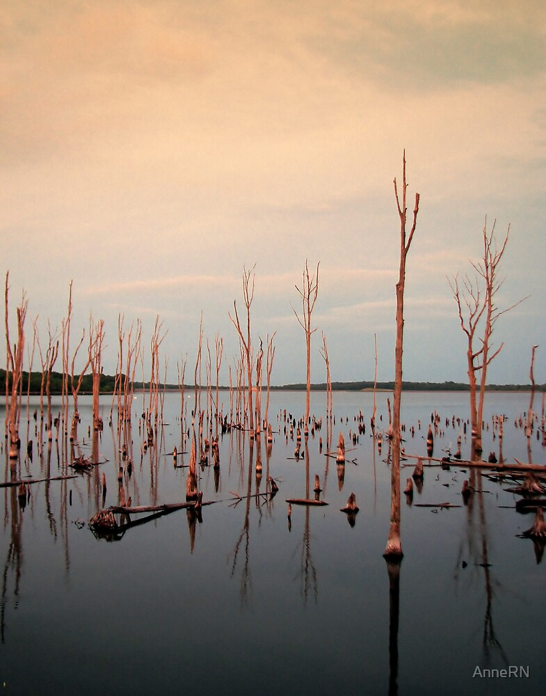Reservoir at Sunset by AnneRN