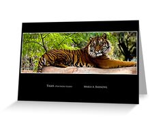 Lounging Tiger - Cool Stuff Greeting Card