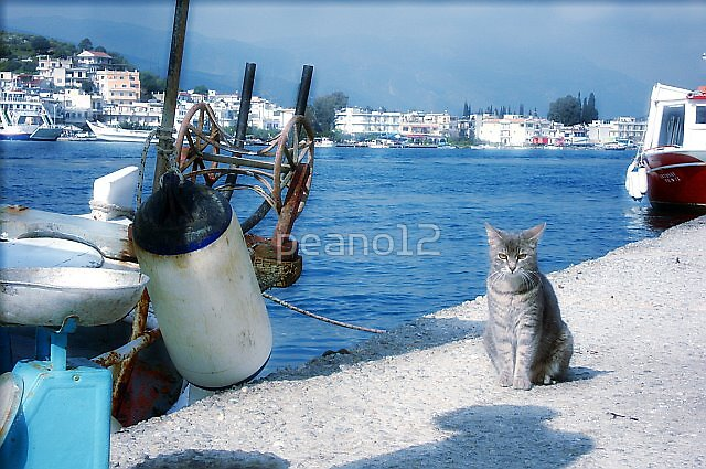 Waiting for the fish by peano12