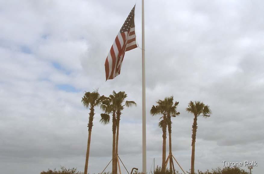 Catalina Island USA by Tyrone Polk