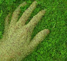 Hand and grass by N Chester
