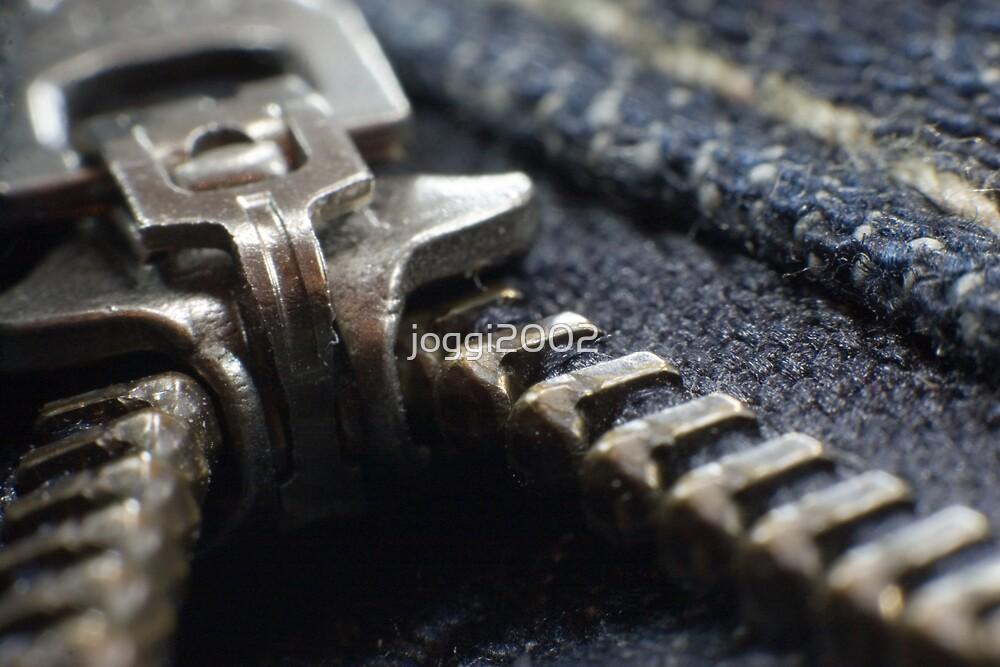 The beauty of a zipper by joggi2002