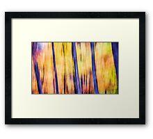 Lemon Sorbet Framed Print