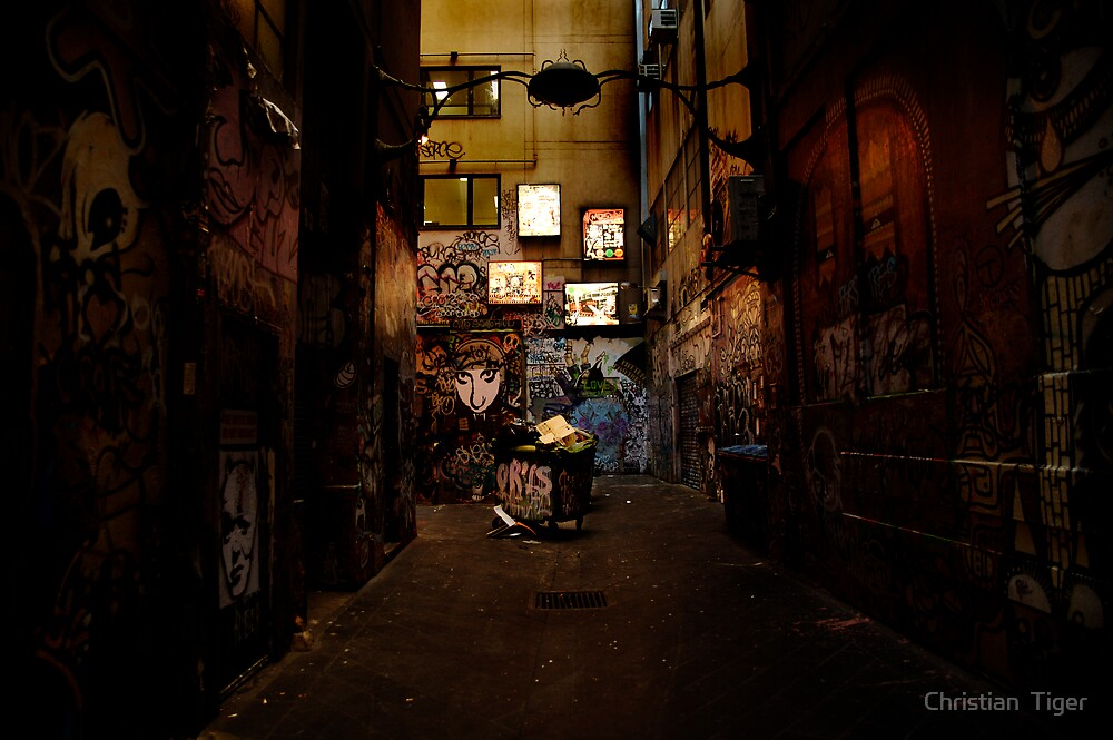 Melbourne Back alley  by Christian  Tiger