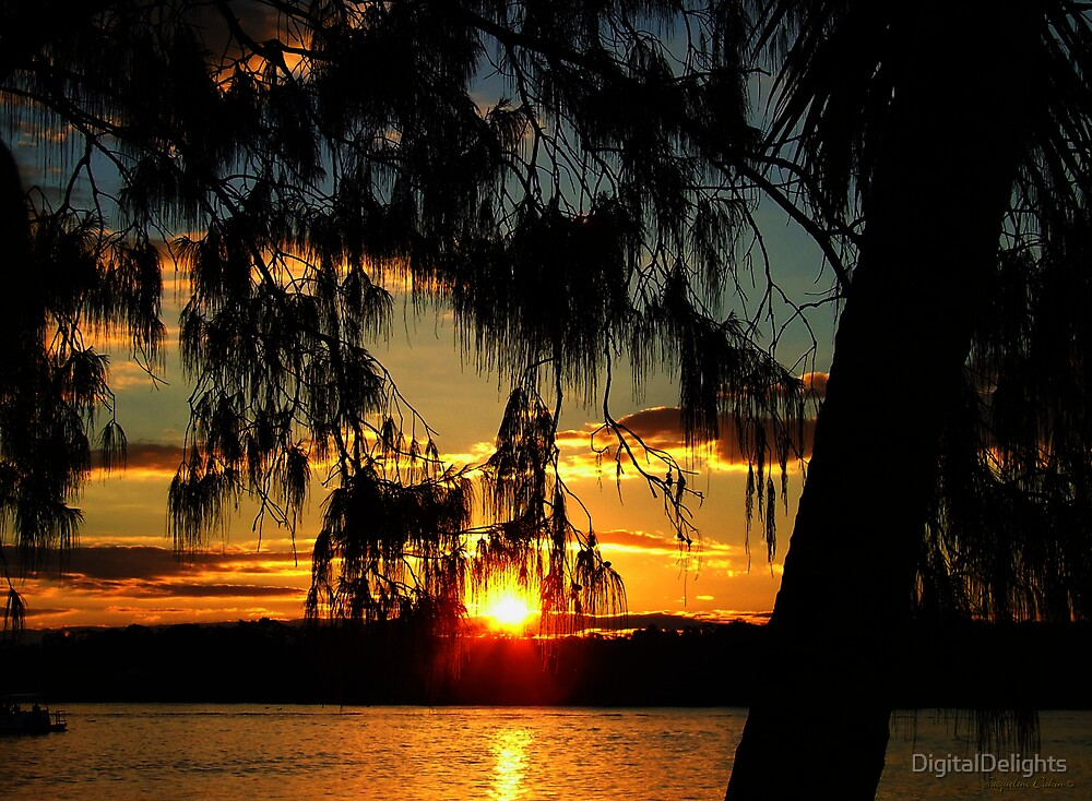 Good Morning Sunshine by DigitalDelights