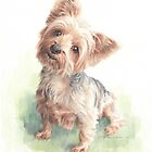 Yorkshire terrier watercolor by Mike Theuer