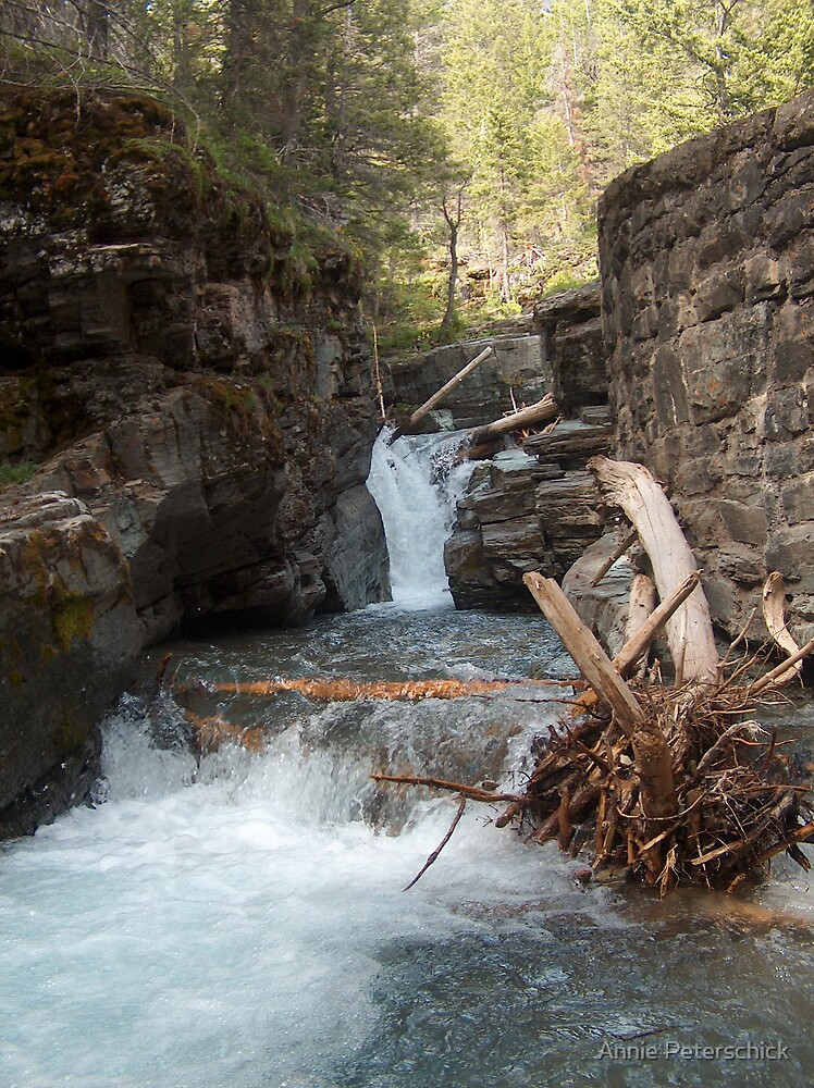 Gorge Water Fall 7 by Annie Peterschick