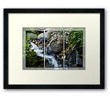 The Dragons Pool Framed Print