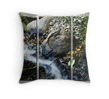 The Dragons Pool Throw Pillow