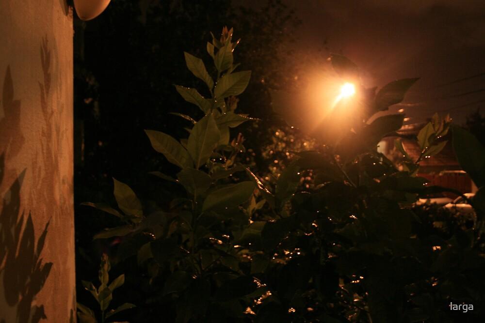 a rainy night by larga