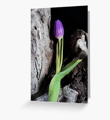 Lonely Greeting Card
