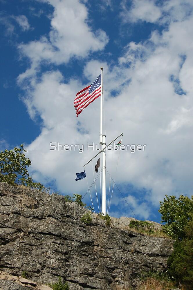 American Flag by Sherry Hunsberger
