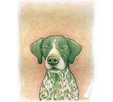 Jola #02 - German Short-Haired Pointer Poster