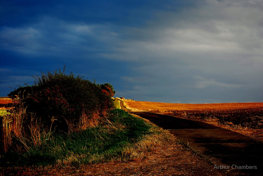 Yellow brick road.. by Arthur Chambers