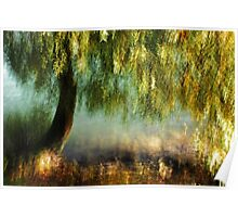 Artscape WillowTree on the Rhine..........Autumn 2013 Poster