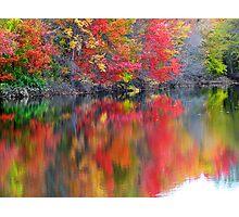 Autumn Overload ! Photographic Print