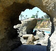 Through the Portal by Dianna