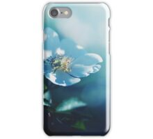 turquoise - like a dream, no 2 iPhone Case/Skin