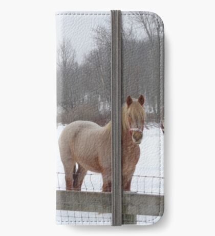 Snow Fun iPhone Wallet/Case/Skin