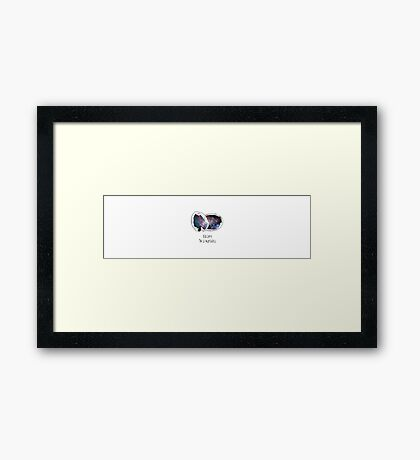 Galaxy in a nutshell Framed Print