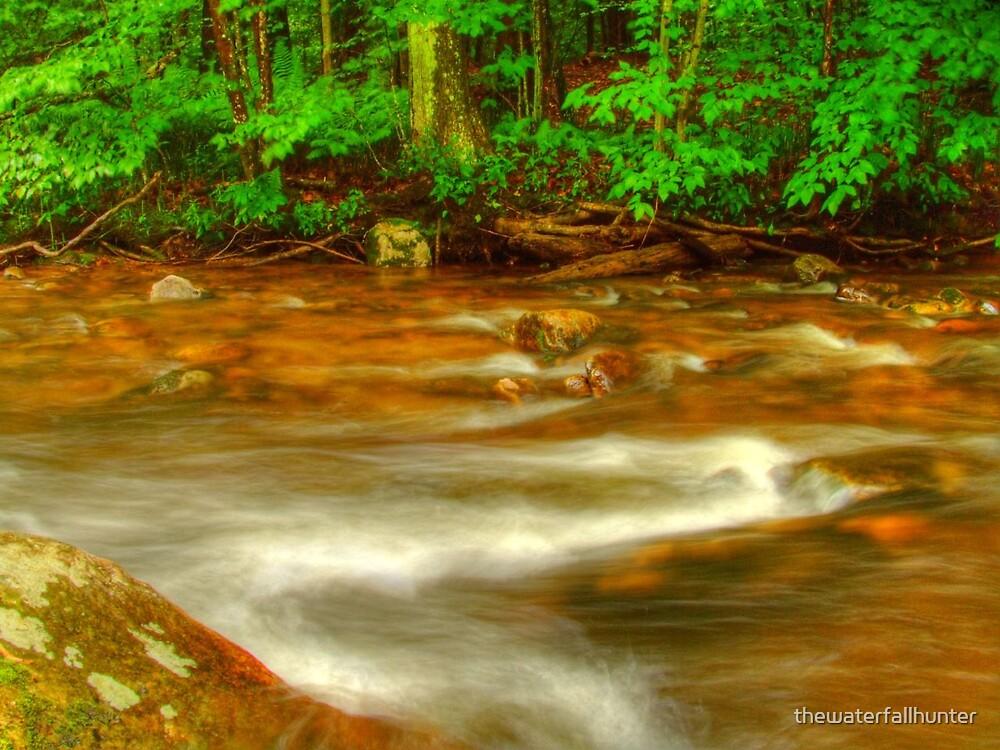 Creek by thewaterfallhunter