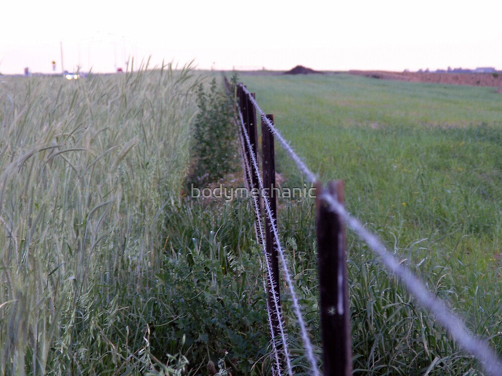 fence by bodymechanic