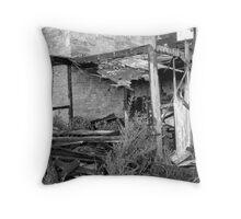 1850's coachouse2 Throw Pillow