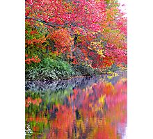 October EXPLOSION ! Photographic Print