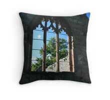 Through the arched window..... Throw Pillow
