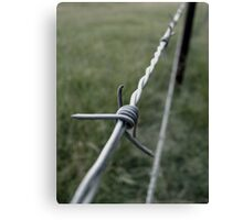 Barbed Canvas Print