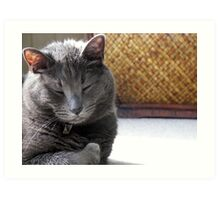 Up Close and Purrrrsonal Art Print