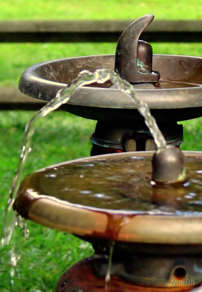 Water Fountain by AnneRN