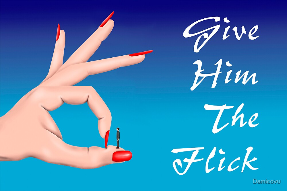 The Flick by Damicovu