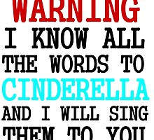 WARNING I KNOW ALL THE WORDS TO CINDERELLA by Divertions