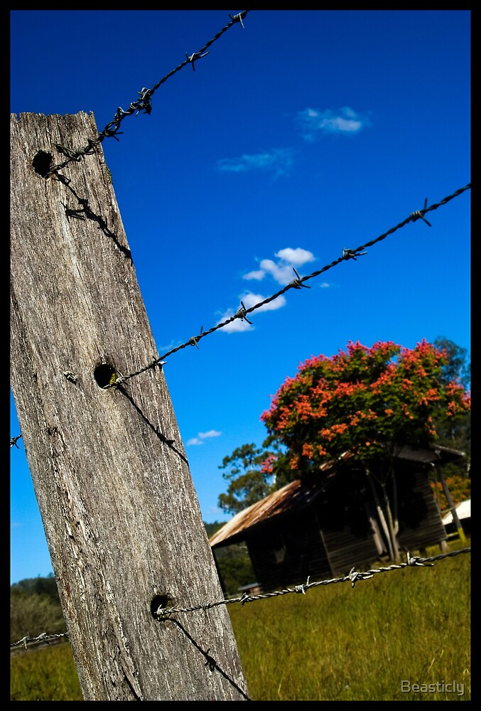 Farm Fence by Beasticly