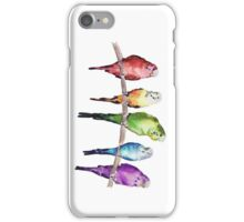 Rainbow budgie birds iPhone Case/Skin
