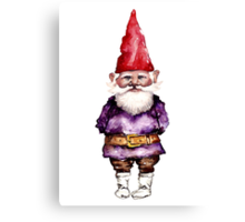Alfred the gnome Canvas Print