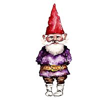 Alfred the gnome Photographic Print
