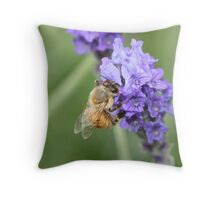Lavender Honey Throw Pillow