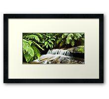 Leura Cascades Framed Print